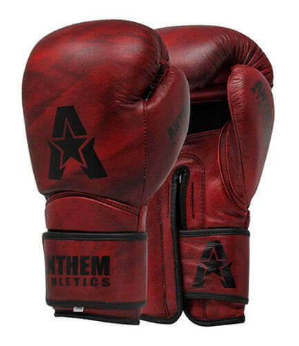 Anthem Athletics Stormbringer II Leather Boxing Gloves