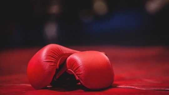 best budget boxing gloves for beginners
