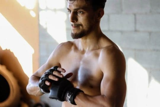 best MMA gloves for training, sparring, and fight