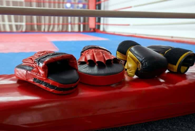 focus mitts for punch training