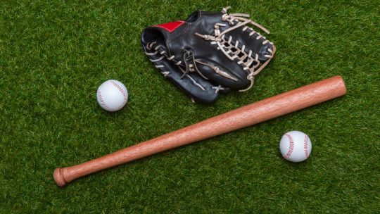 what are fungo bats